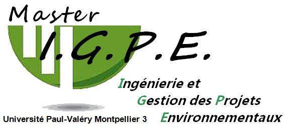 Logo Master IGPE
